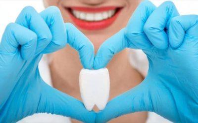 ¿Qué tipos de dientes hay?